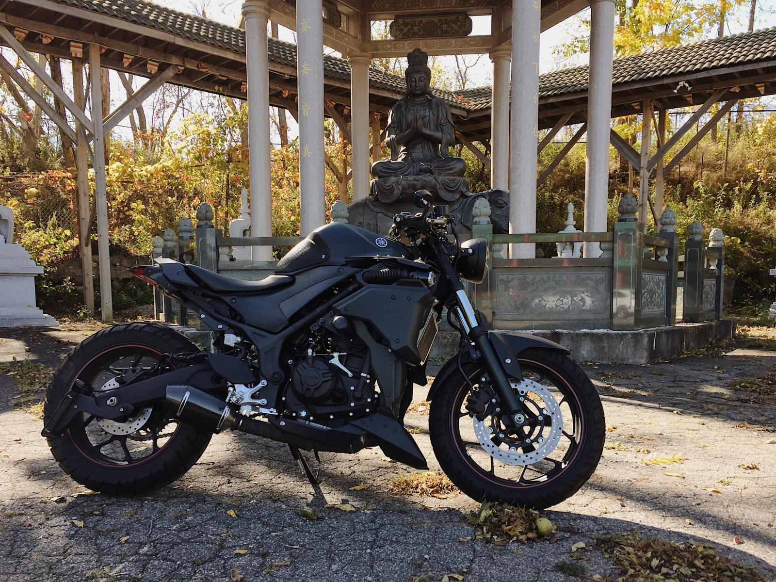 My R3 (Street fighter) - Yamaha R3 Forum